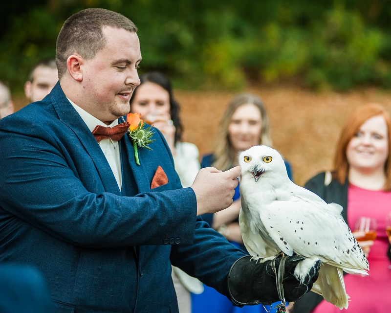 Animals at Weddings!